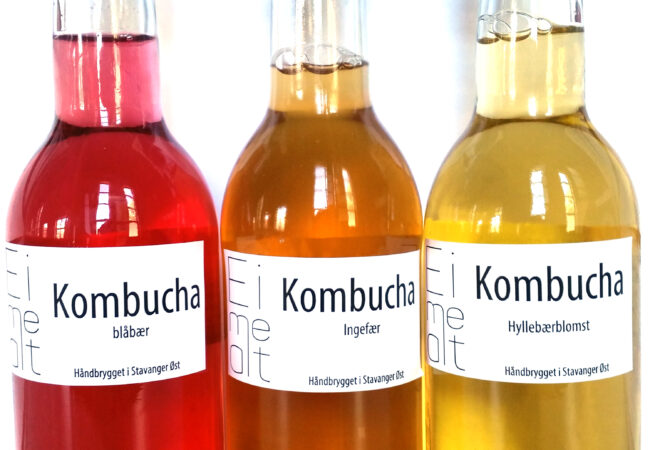 GJESTEBLOGG 4: EIMEALT FORTELLER OM SIN KOMBUCHA