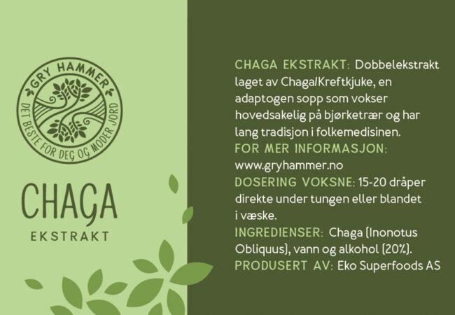 Chaga, en medisinsk sopp og et kraftfullt adaptogen