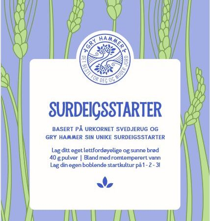 GRY HAMMER SURDEIGSTARTER – SLIK FÅR DU LIV I DEN!